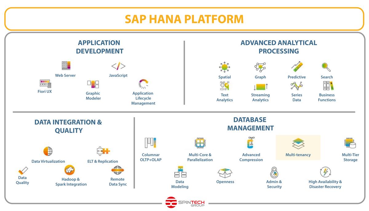 hana_platform